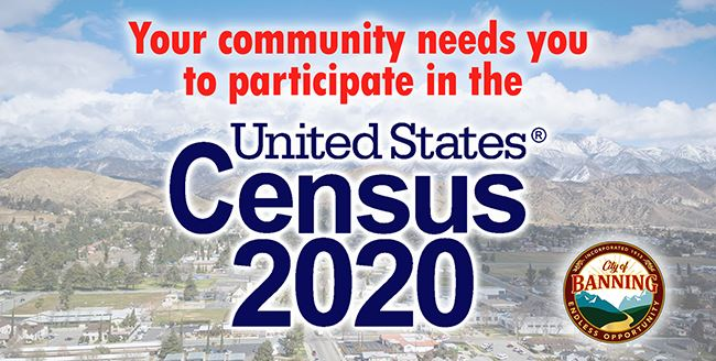 census 2020 web